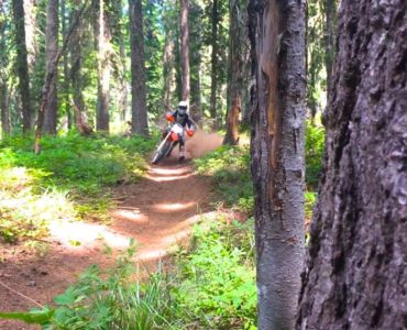 Summertime Singletrack